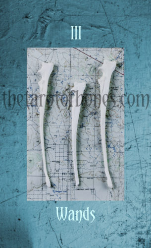 threeofwandswatermark